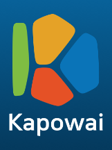 Technology Business Kapowai in Kiev